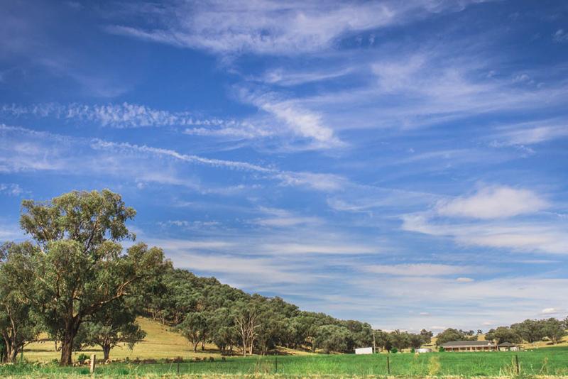 NSW Photographer